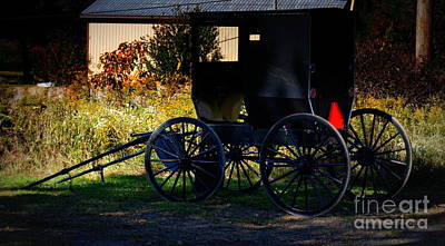 Horses Photograph - Amish Buggy by Georgia's Art Brush