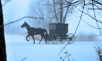 Amish Dreamscape Print by David Arment
