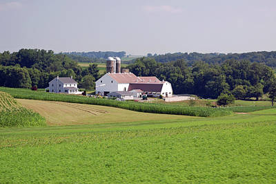 Amish Farm Print by Joyce Huhra