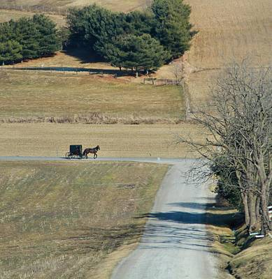 Amish Horse And Buggy On A Country Road Print by Dan Sproul