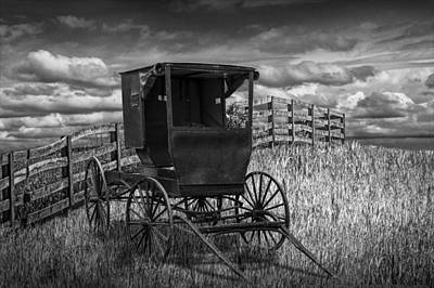 Amish Horse Buggy In Black And White Print by Randall Nyhof