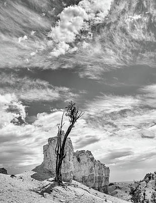 Colorado Plateau Photograph - Among The Hoodoos by Joseph Smith