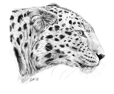Amur Leopard Print by Stuart Hogton