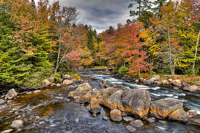 An Autumn Afternoon On The Moose River Print by David Patterson