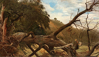 Robert Zuend Painting - An Uprooted Tree by Robert Zuend