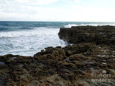 Photograph - Anastasia Limestone Cliff At Blowing Rocks by D Hackett