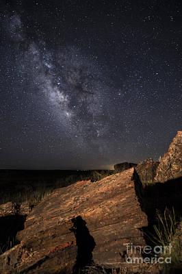 Petrified Forest Arizona Photograph - Ancient History by Melany Sarafis