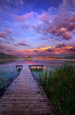 Amber Photograph - And Silence by Phil Koch