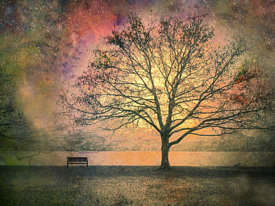 Benches Photograph - And The Morning Is Perfect In All Her Measured Wrinkles by Tara Turner