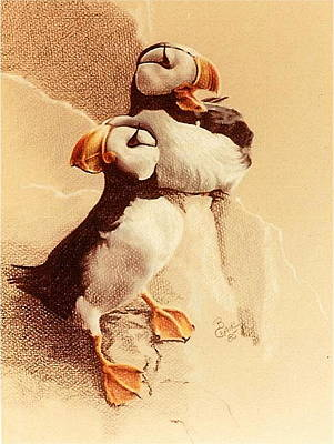 Puffin Drawing - And Then She Said by Barbara Keith