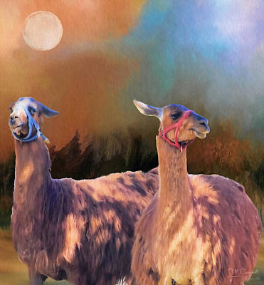 Llama Digital Art - And They Danced By The Light Of The Moon by Theresa Campbell