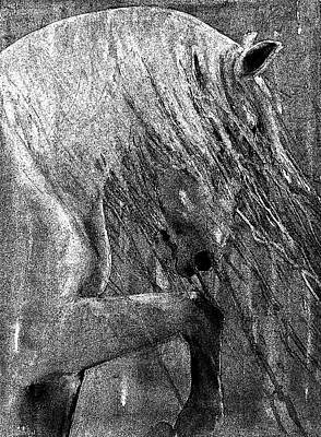 Horse Art Painting - Andalusian Stallion Black And White Stippled by Jani Freimann