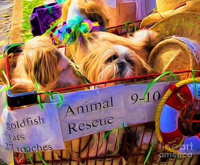 Goldfish Digital Art - Animal Rescue Nola by Kathleen K Parker
