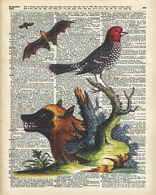 Watercolor With Pen Mixed Media - Animals Zoology Old Illustration Over A Old Dictionary Page by Jacob Kuch