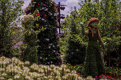 Plant Photograph - Anna And Elsa by Zina Stromberg