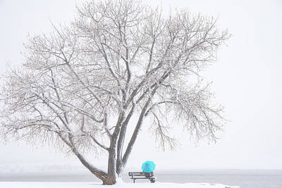 Another Winter Alone Print by Darren White
