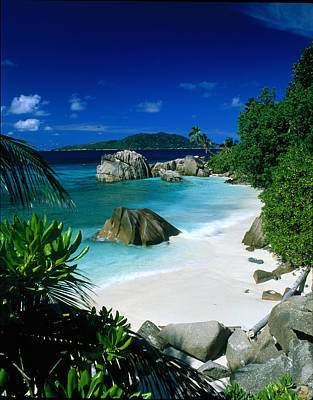 Anse Patatran La Digue Seychelles Print by Panoramic Images