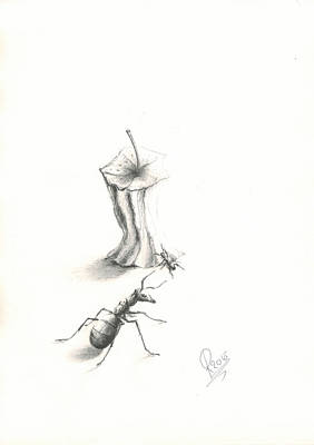 Ant Drawing - Ant Fun by Roy  Ramakers
