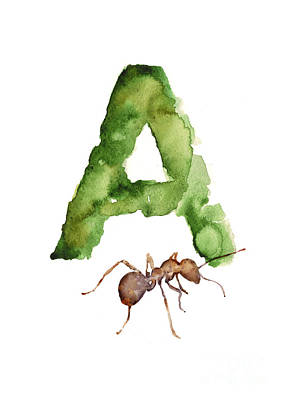 Ant Mixed Media - Ant Watercolor Alphabet Painting by Joanna Szmerdt