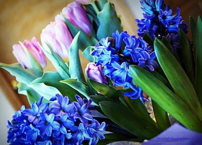Dutch Hyacinth Photograph - Anticipation by Cricket Hackmann