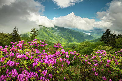 Rhododendron Photograph - Appalachian Mountains Spring Flowers Scenic Landscape Asheville North Carolina Blue Ridge Parkway by Dave Allen