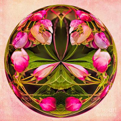 Apple Blossom Print by Gillian Singleton