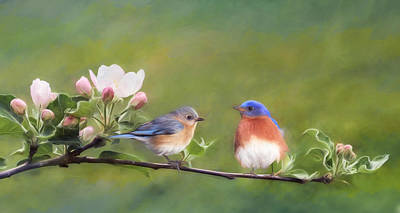 Bluebird Mixed Media - Apple Blossoms And Bluebirds by Lori Deiter