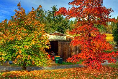Apple Shed Print by Randy Wehner Photography