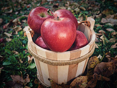 Apples Are Autumn's Unsung Heroes Print by Prairie Pics Photography