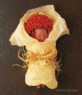 Apricot Photograph - Apricot Bouquet by Anne Geddes
