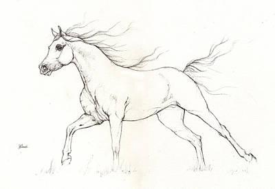 Arabian Horse Drawing 2015 12 20 Print by Angel Tarantella