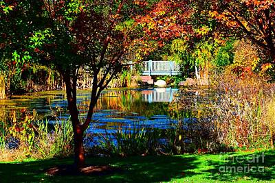 Webster Ny Photograph - Arboretum In The Fall by Jennifer Craft