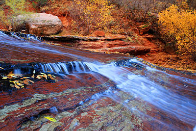Arch Angel Falls In Zion Print by Pierre Leclerc Photography