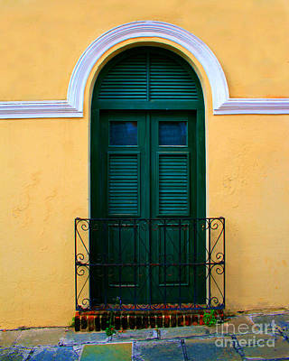 Screen Doors Photograph - Arched Doorway by Perry Webster