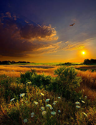 Environement Photograph - Aridity by Phil Koch