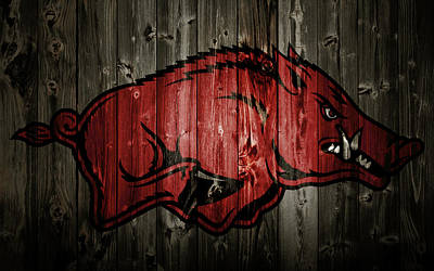 University Of Arkansas Mixed Media - Arkansas Razorbacks 2b by Brian Reaves