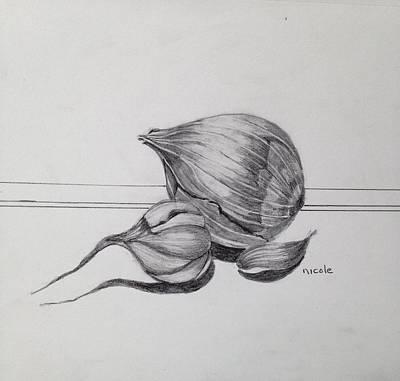 Onion Drawing - Aromatics by Nicole Curreri