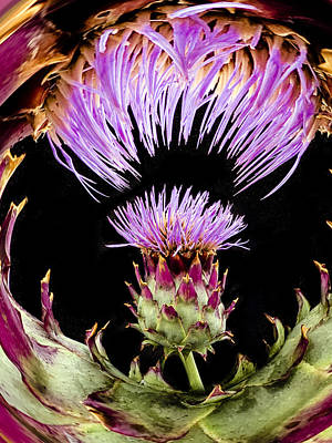 Cannibalism Photograph - Artichoke Cannibalism By Jean Noren by Jean Noren