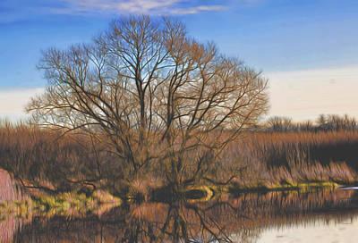 Artistic Creek Tree  Print by Leif Sohlman