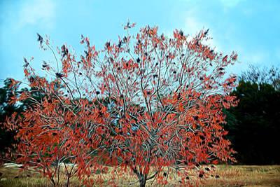 Artistid Fall Red Tree Leaves Original by Linda Phelps