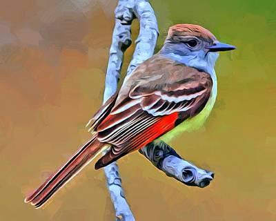 Flycatcher Digital Art - Ash Throated Flycatcher by Scott Wallace
