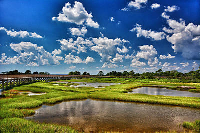 Brandywine Battlefield Photograph - Assateague Summer by Kathi Isserman