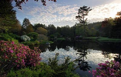 Acrylic Photograph - Asticou Azalea Garden by Juergen Roth