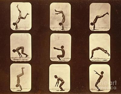 Gymnast Photograph - Athletes by Eadweard Muybridge