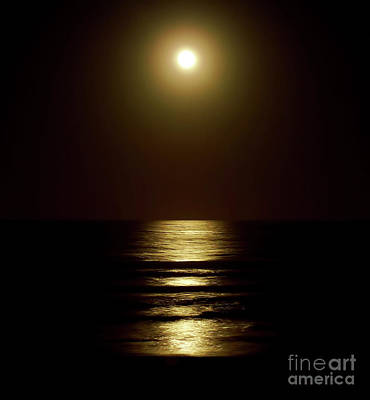 Photograph - Atlantic Moon Shine by D Hackett