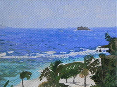 Atlantic Side Of St. Maarten Print by Margaret Brooks