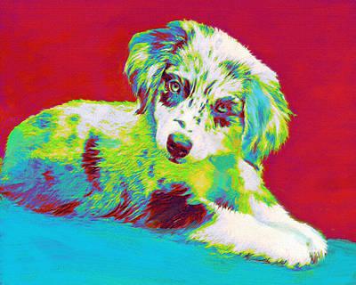 Pups Digital Art - Aussie Puppy by Jane Schnetlage