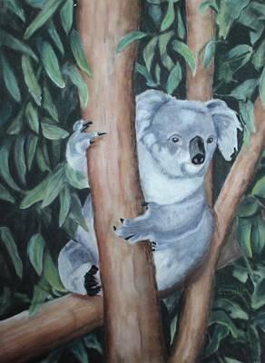 Koala Painting - Austrailian Koala Bear by Carol Lytle
