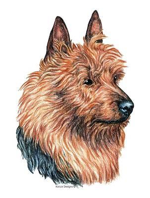 Pets Drawing - Australian Terrier by Kathleen Sepulveda