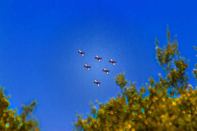 Royal Australian Navy Photograph - Australian Roulettes Formation Over North Head Sydney by Miroslava Jurcik